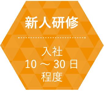 新人研修 / 入社10~30日程度